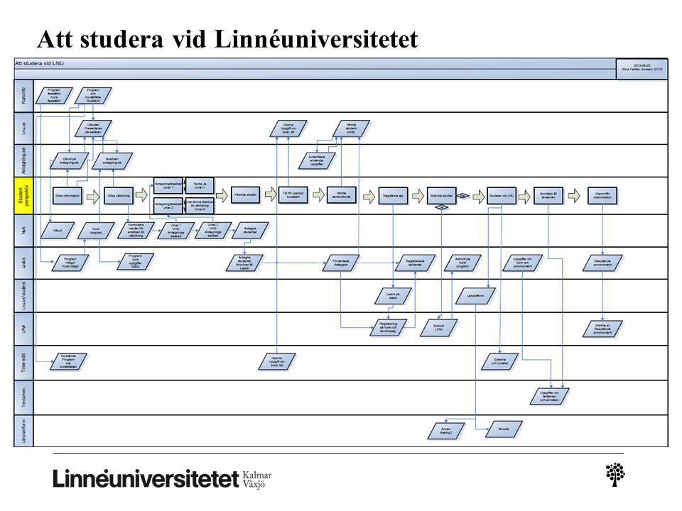 Att studera vid Linnéuniversitetet