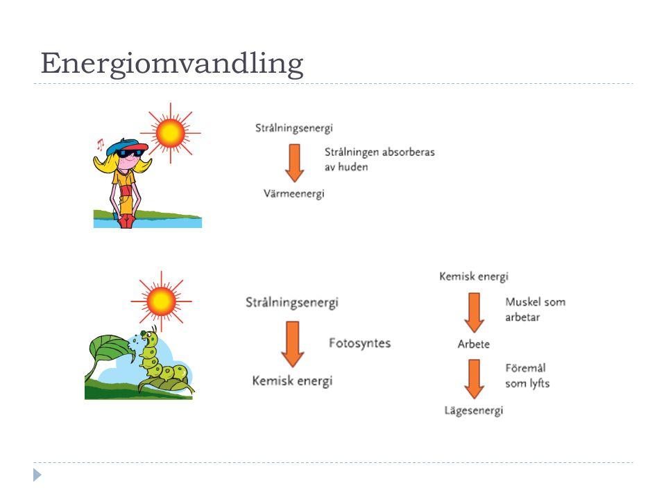 Energiomvandling