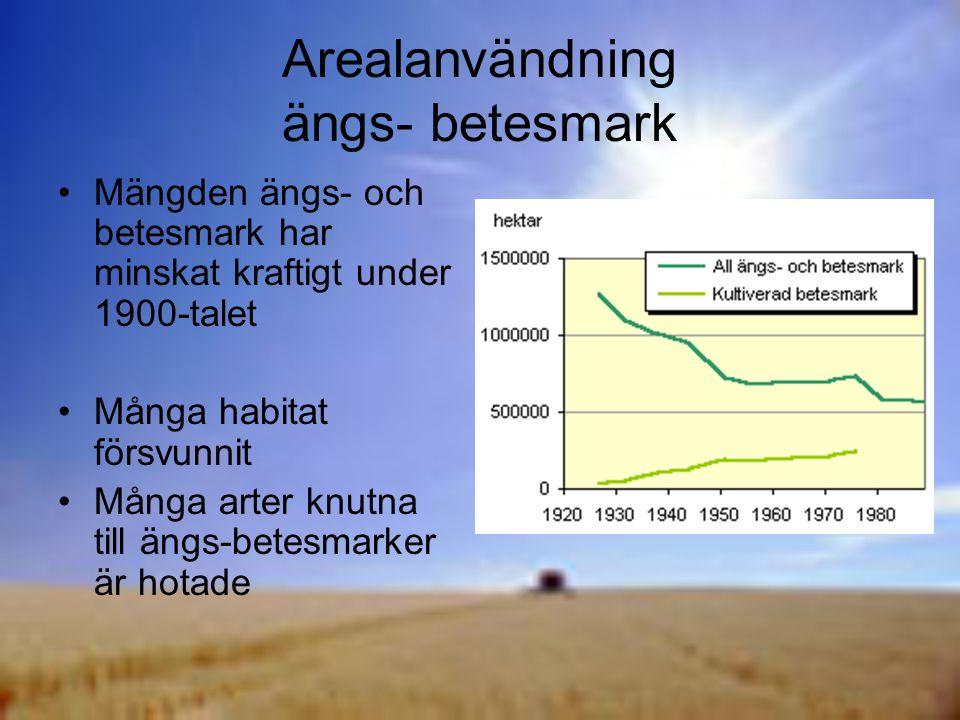 Arealanvändning ängs- betesmark Mängden ängs- och betesmark har minskat kraftigt under 1900-talet Många habitat försvunnit Många arter knutna till ängs-betesmarker är hotade