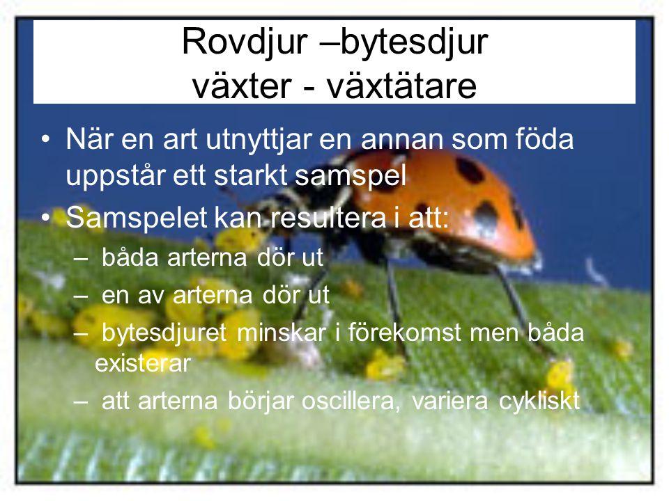 Samspelet mellan arter: konkurrens och rovdjur/byte Detta sampel är avgörande för vilka arter som finns.