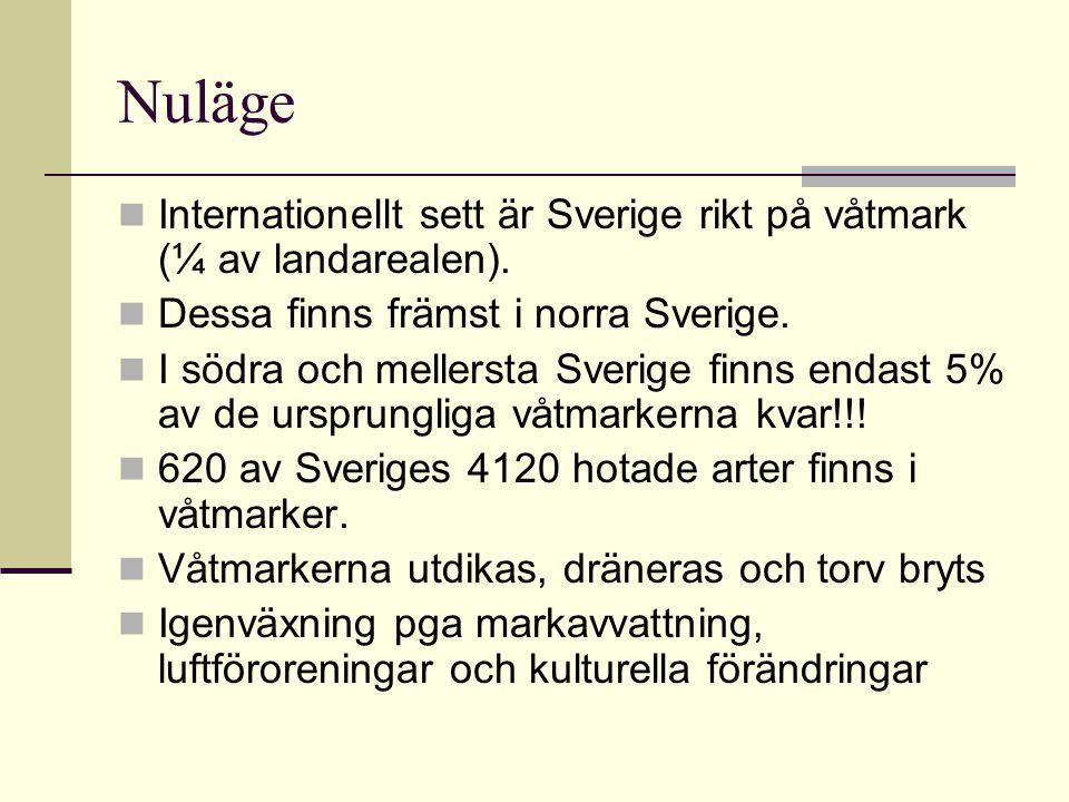 Nuläge Internationellt sett är Sverige rikt på våtmark (¼ av landarealen). Dessa finns främst i norra Sverige. I södra och mellersta Sverige finns end