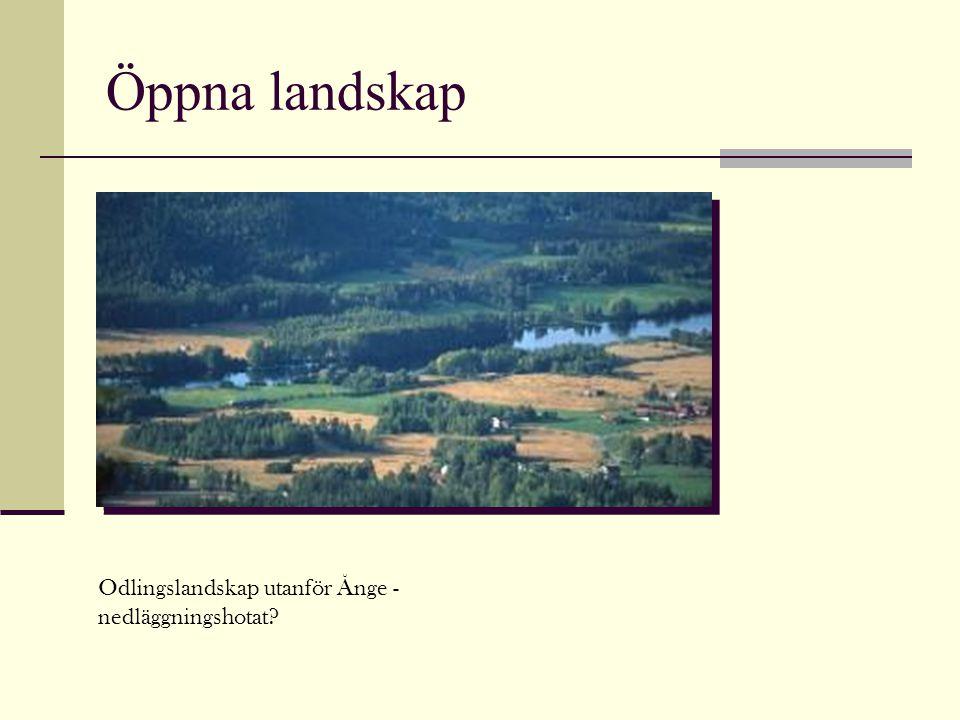 Öppna landskap Odlingslandskap utanför Ånge - nedläggningshotat?