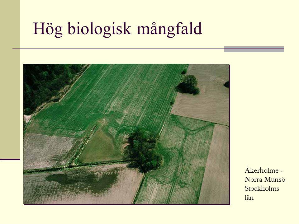 Hög biologisk mångfald Åkerholme - Norra Munsö Stockholms län