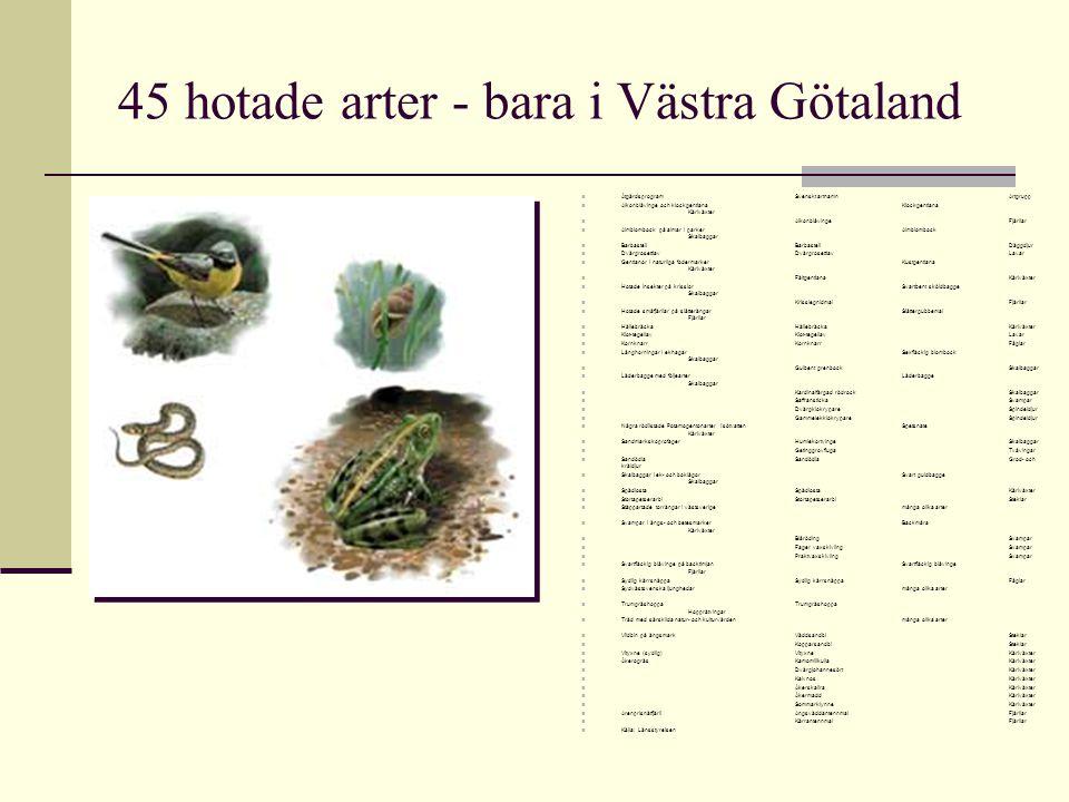 45 hotade arter - bara i Västra Götaland Åtgärdsprogram Svenskt artnamn Artgrupp Alkonblåvinge och klockgentiana Klockgentiana Kärlväxter Alkonblåving