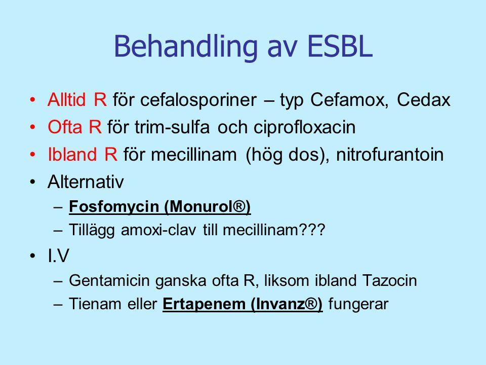 Behandling av ESBL Alltid R för cefalosporiner – typ Cefamox, Cedax Ofta R för trim-sulfa och ciprofloxacin Ibland R för mecillinam (hög dos), nitrofu