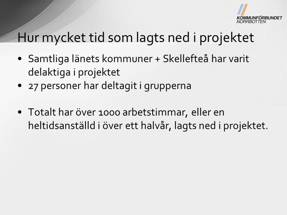 Samtliga länets kommuner + Skellefteå har varit delaktiga i projektet 27 personer har deltagit i grupperna Totalt har över 1000 arbetstimmar, eller en heltidsanställd i över ett halvår, lagts ned i projektet.