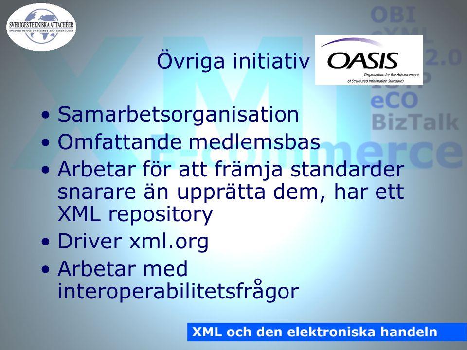 Övriga initiativ Samarbetsorganisation Omfattande medlemsbas Arbetar för att främja standarder snarare än upprätta dem, har ett XML repository Driver xml.org Arbetar med interoperabilitetsfrågor