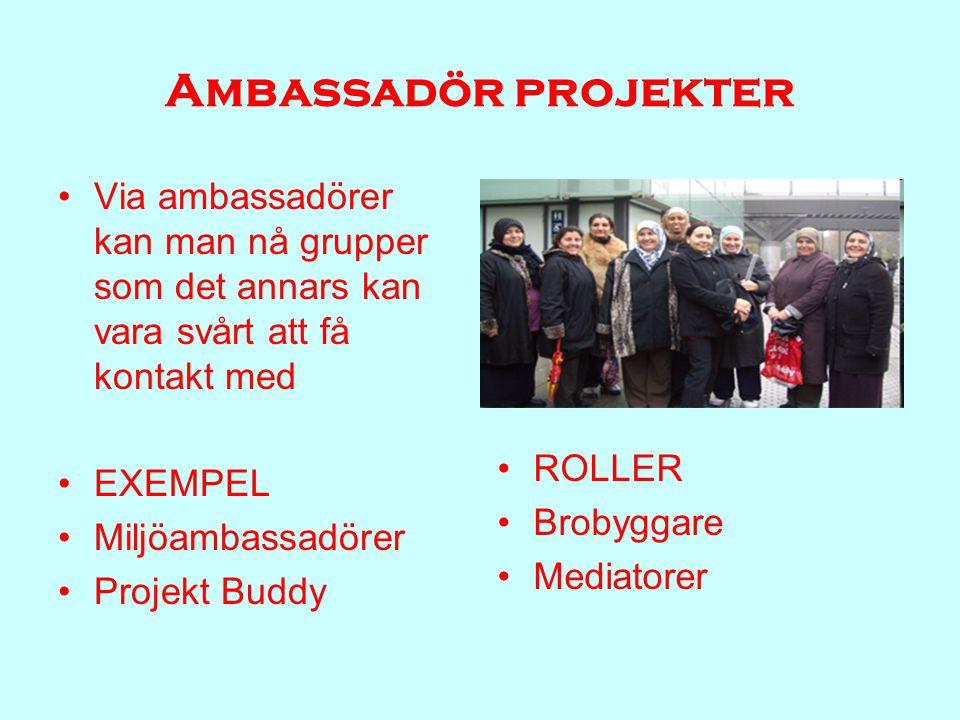 Ambassadör projekter Via ambassadörer kan man nå grupper som det annars kan vara svårt att få kontakt med EXEMPEL Miljöambassadörer Projekt Buddy ROLLER Brobyggare Mediatorer