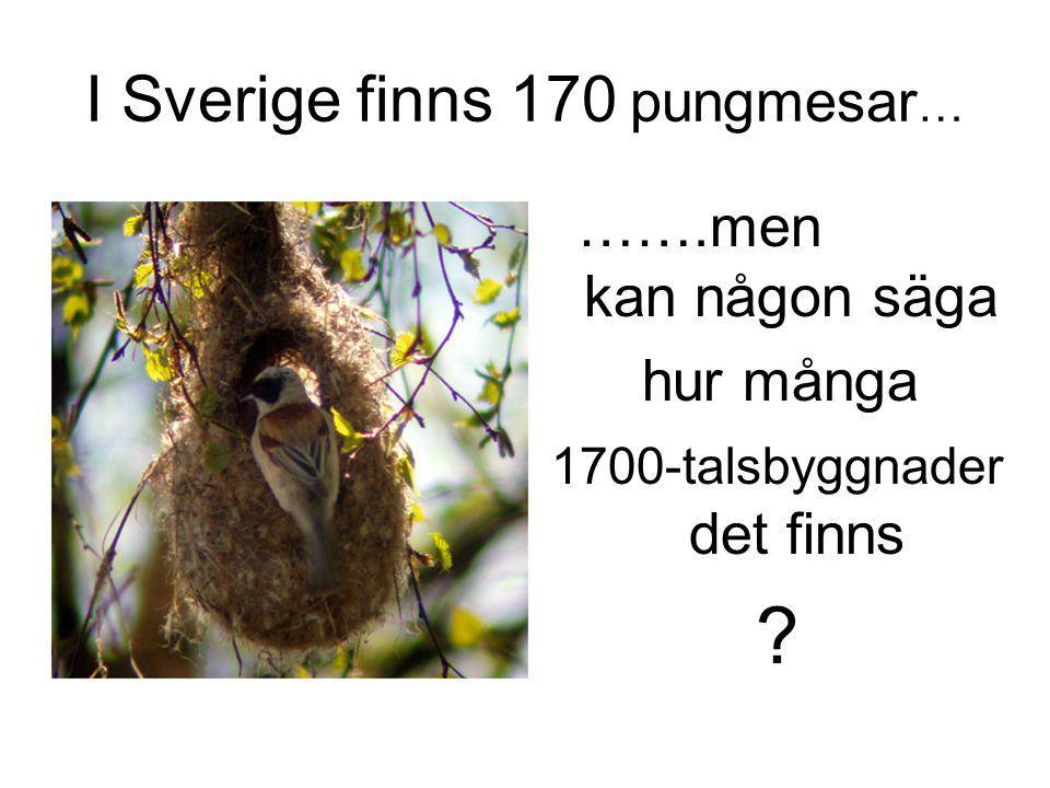 I Sverige finns 170 pungmesar … …….men kan någon säga hur många 1700-talsbyggnader det finns ?