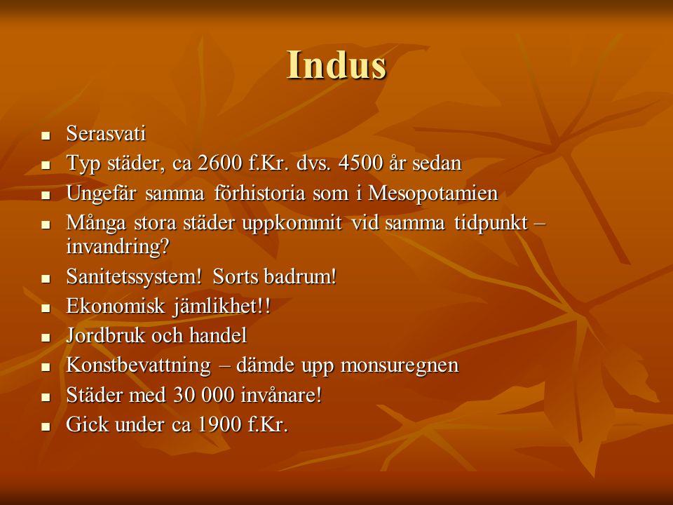 Indus Serasvati Serasvati Typ städer, ca 2600 f.Kr. dvs. 4500 år sedan Typ städer, ca 2600 f.Kr. dvs. 4500 år sedan Ungefär samma förhistoria som i Me