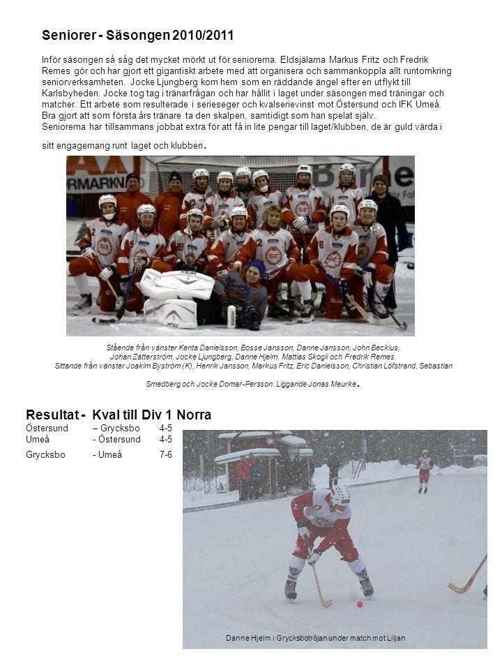 Seniorer - Säsongen 2010/2011 Inför säsongen så såg det mycket mörkt ut för seniorerna. Eldsjälarna Markus Fritz och Fredrik Remes gör och har gjort e