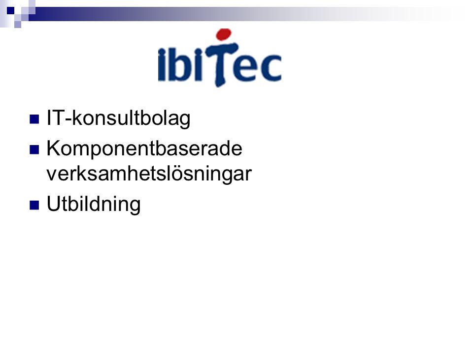 IT-konsultbolag Komponentbaserade verksamhetslösningar Utbildning