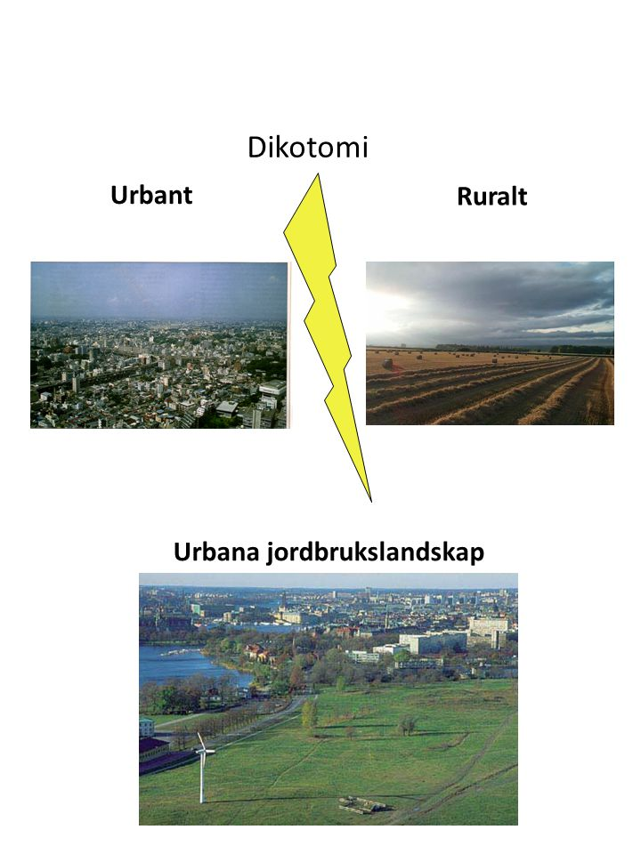 Urbant Ruralt Urbana jordbrukslandskap Dikotomi