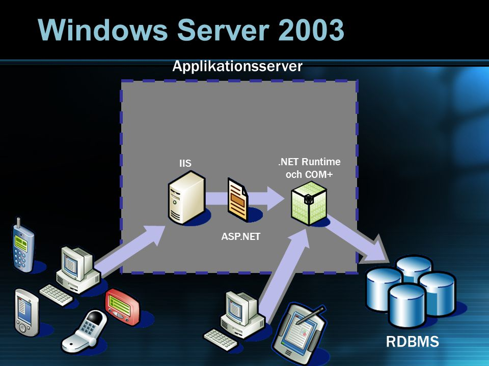 .NET Runtime och COM+ LoBSAPSiebelApplikationsserver IIS ASP.NET RDBMS Windows Server 2003