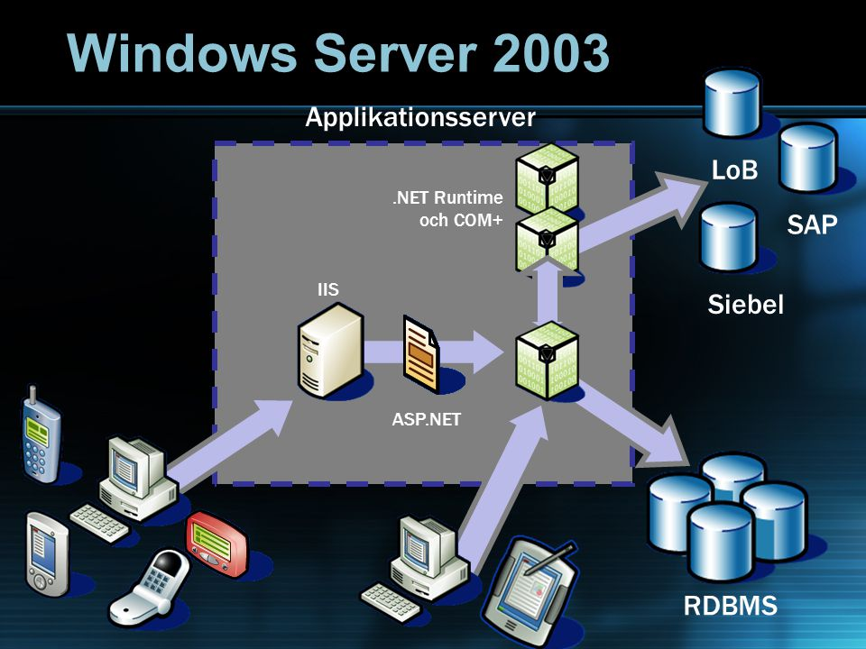 LoBSAPSiebel XML Web Service IIS ASP.NET RDBMS Applikationsserver Windows Server 2003