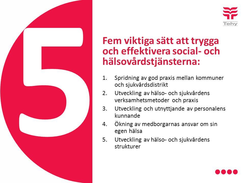 Fem viktiga sätt att trygga och effektivera social- och hälsovårdstjänsterna: 1.Spridning av god praxis mellan kommuner och sjukvårdsdistrikt 2.Utveckling av hälso- och sjukvårdens verksamhetsmetoder och praxis 3.Utveckling och utnyttjande av personalens kunnande 4.Ökning av medborgarnas ansvar om sin egen hälsa 5.Utveckling av hälso- och sjukvårdens strukturer 5
