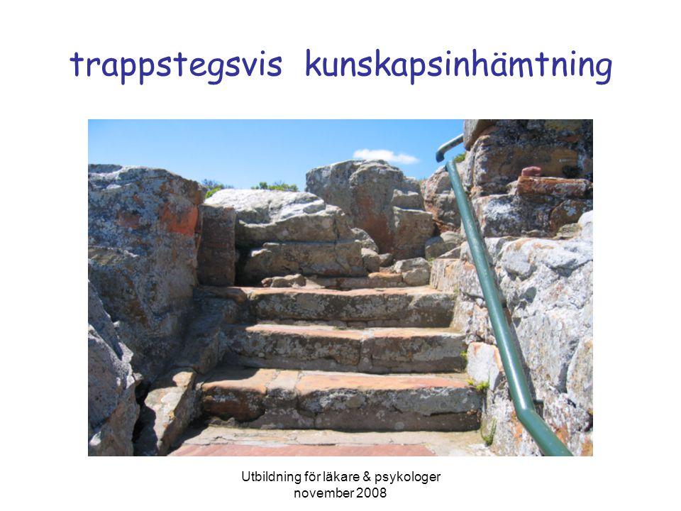 Utbildning för läkare & psykologer november 2008 trappstegsvis kunskapsinhämtning