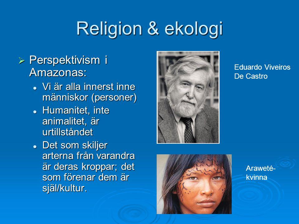 Religion & ekologi  Perspektivism i Amazonas: Vi är alla innerst inne människor (personer) Vi är alla innerst inne människor (personer) Humanitet, in