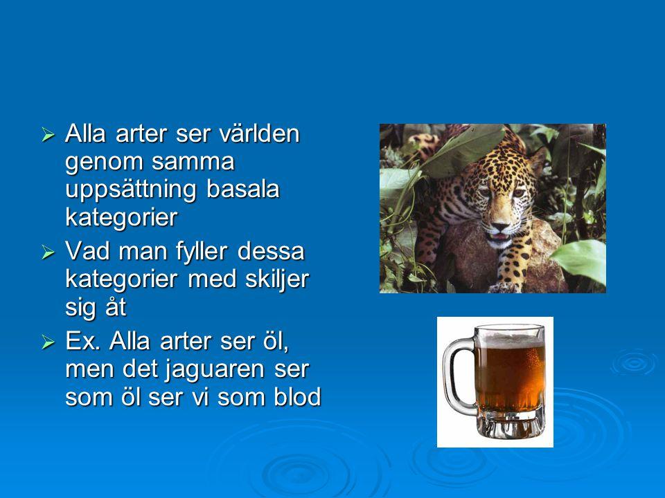  Alla arter ser världen genom samma uppsättning basala kategorier  Vad man fyller dessa kategorier med skiljer sig åt  Ex. Alla arter ser öl, men d