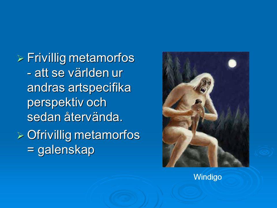  Frivillig metamorfos - att se världen ur andras artspecifika perspektiv och sedan återvända.  Ofrivillig metamorfos = galenskap Windigo