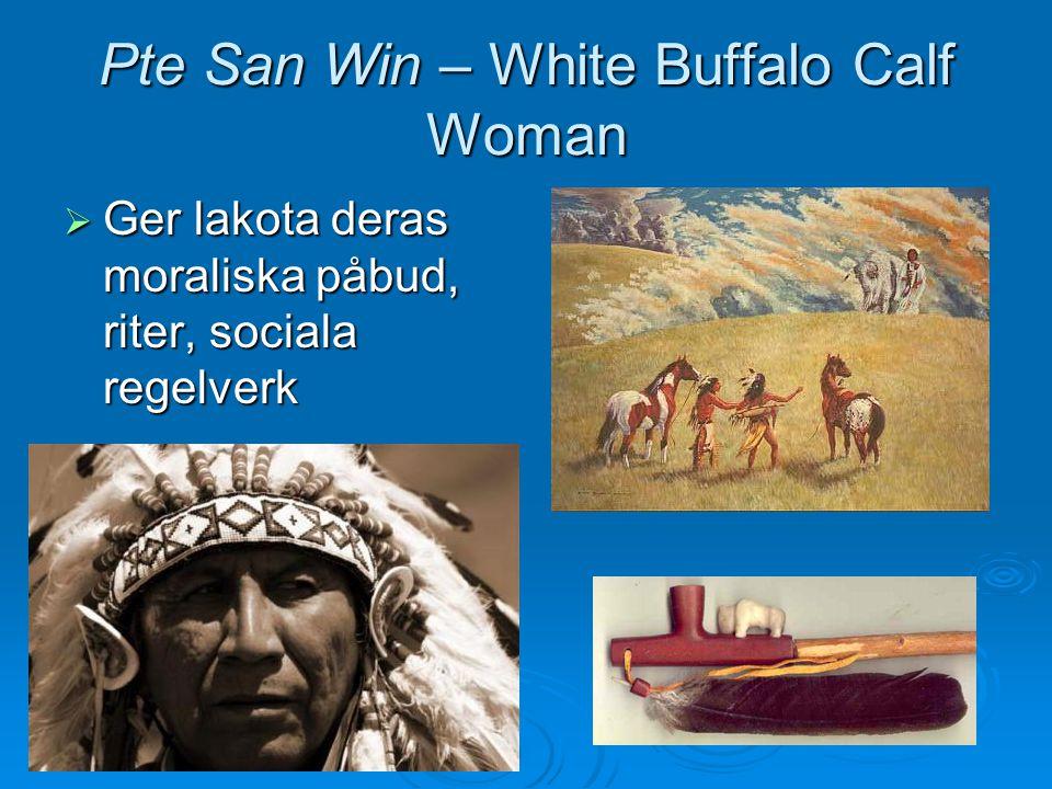  De vita fruktade uppror och trupper kallades in  Andedansen kvästes vid massakern vid Wounded Knee den 29 december 1890 Big Foot Medicinmannen Yellow Birds Kropp på massakerplatsen