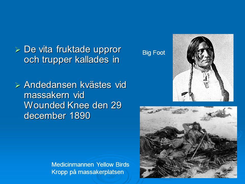  De vita fruktade uppror och trupper kallades in  Andedansen kvästes vid massakern vid Wounded Knee den 29 december 1890 Big Foot Medicinmannen Yell