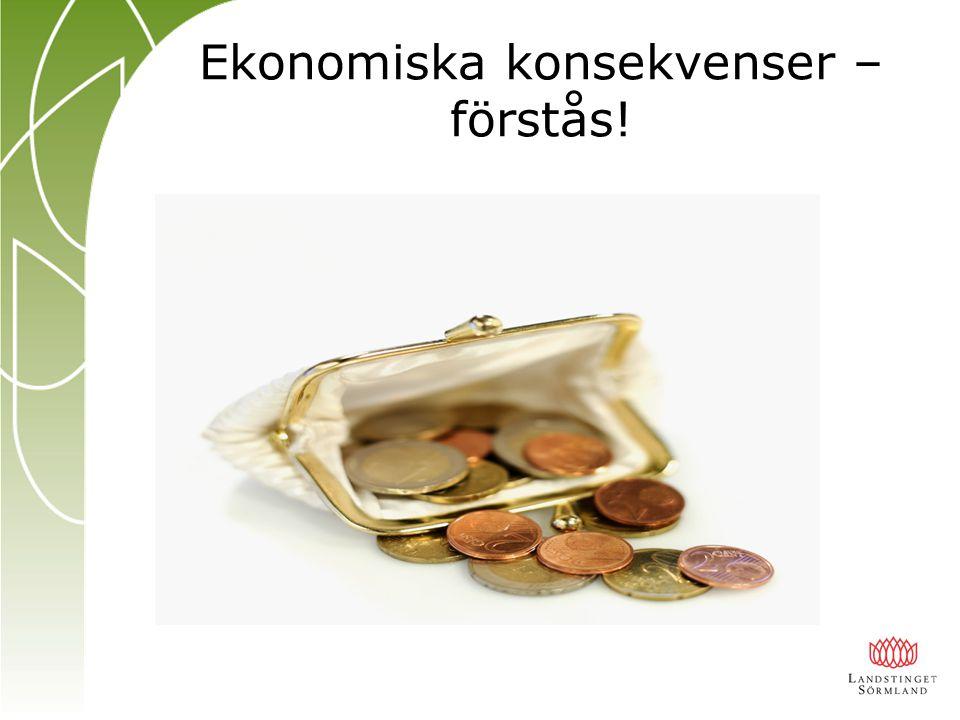 Ekonomiska konsekvenser – förstås!