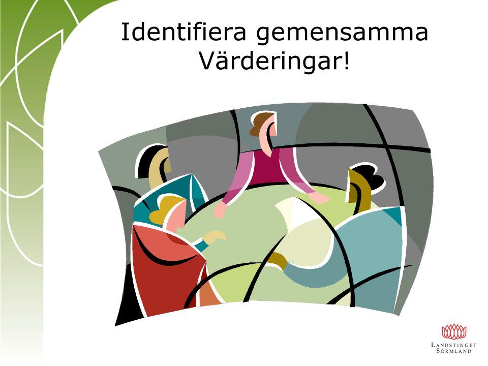Identifiera gemensamma Värderingar!