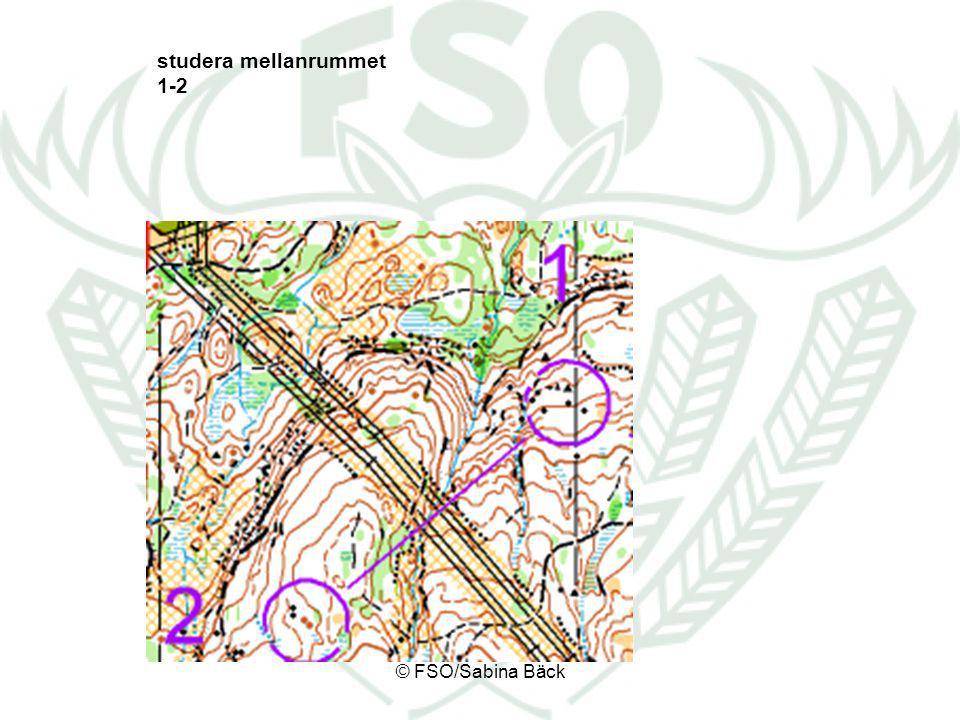 studera mellanrummet 1-2 © FSO/Sabina Bäck