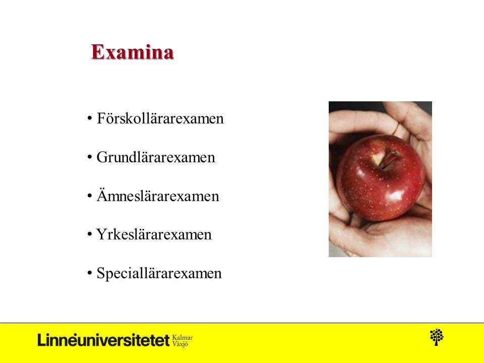 Examina Förskollärarexamen Grundlärarexamen Ämneslärarexamen Yrkeslärarexamen Speciallärarexamen