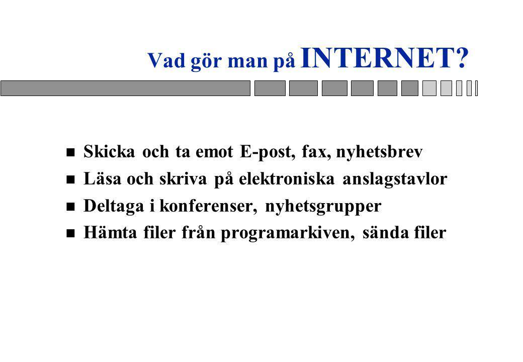 Vad gör man på INTERNET.