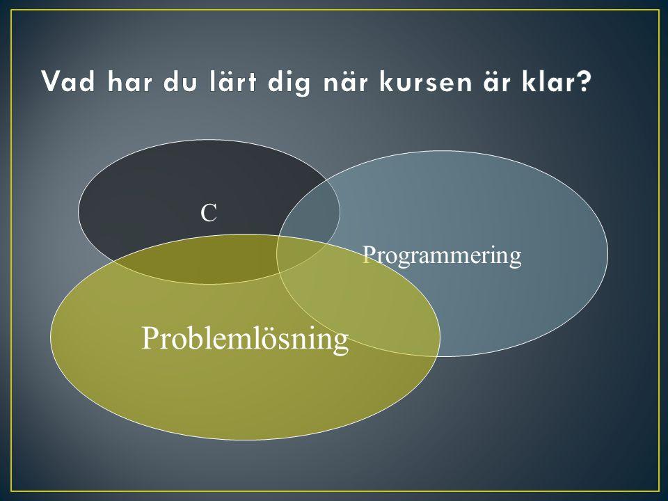 C Programmering Problemlösning