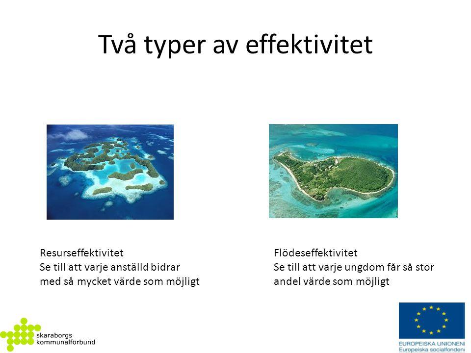 Två typer av effektivitet Resurseffektivitet Se till att varje anställd bidrar med så mycket värde som möjligt Flödeseffektivitet Se till att varje un