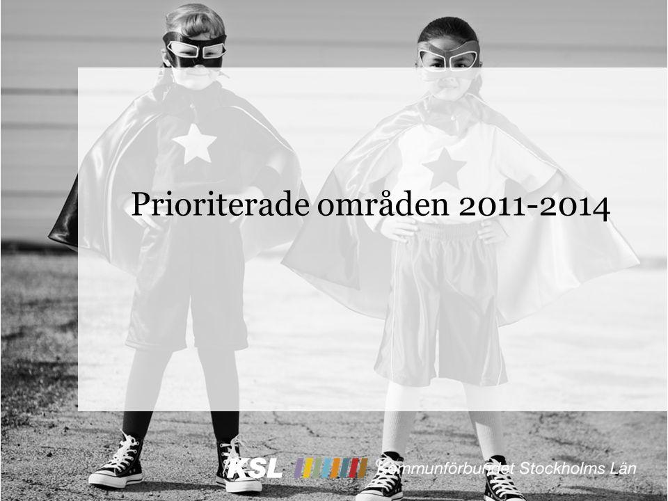 Prioriterade områden 2011-2014