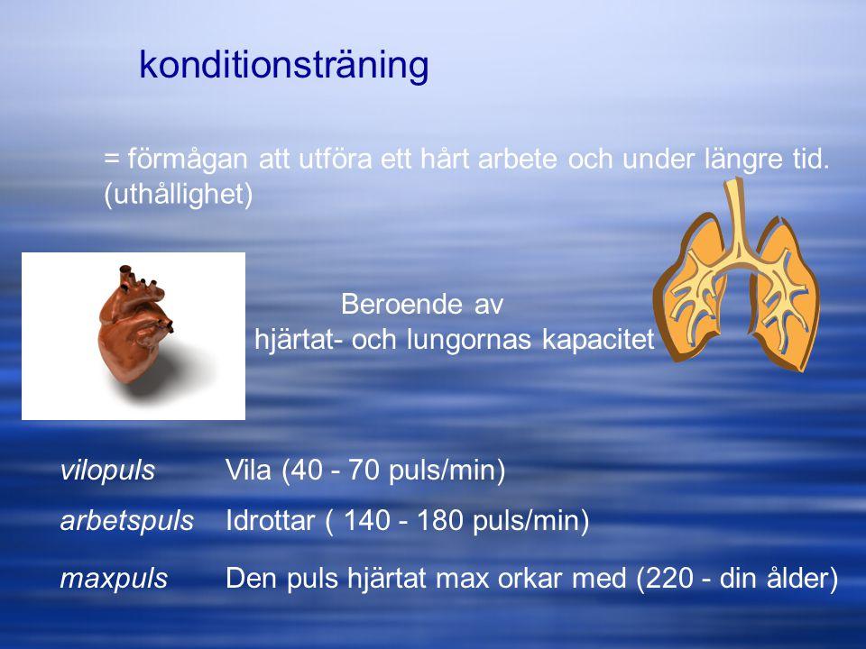konditionsträning = förmågan att utföra ett hårt arbete och under längre tid. (uthållighet) Beroende av hjärtat- och lungornas kapacitet vilopuls arbe