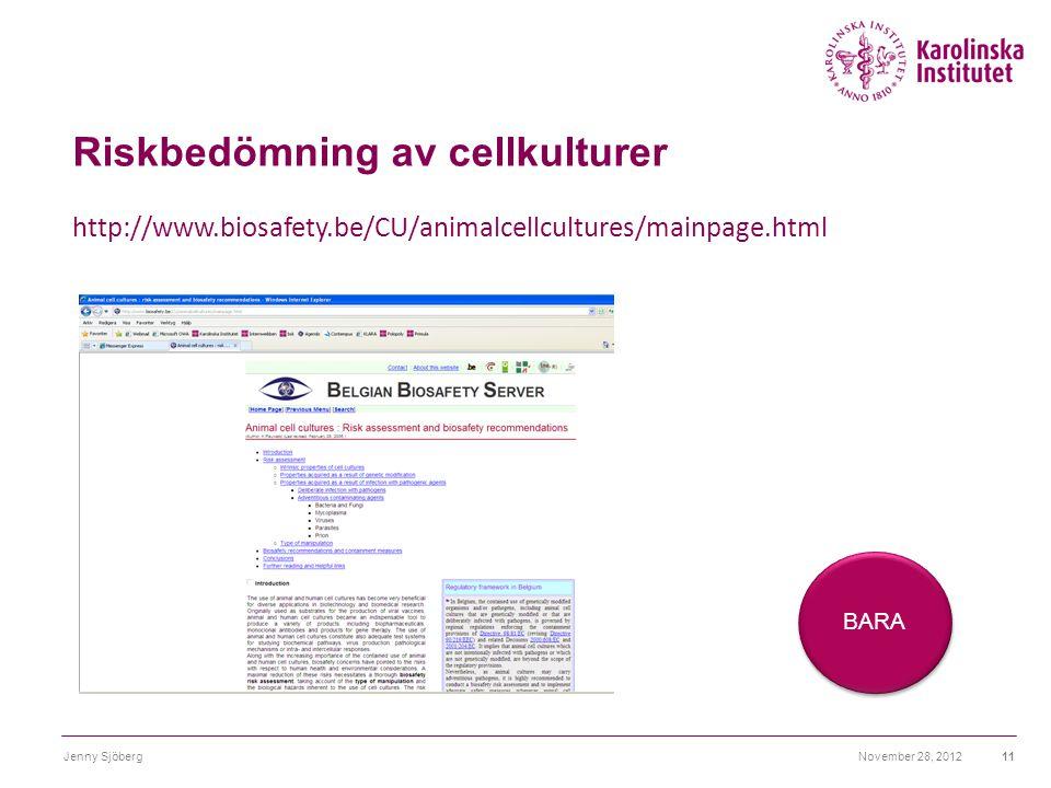 Riskbedömning av cellkulturer November 28, 2012Jenny Sjöberg11 http://www.biosafety.be/CU/animalcellcultures/mainpage.html BARA