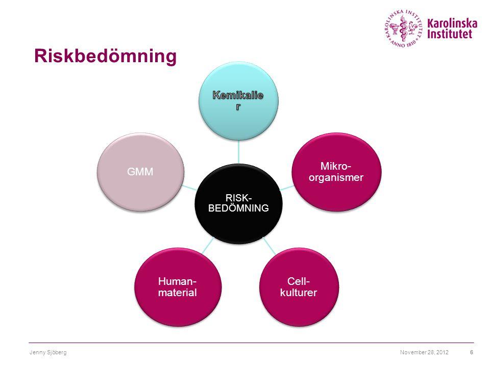 Riskbedömning November 28, 2012Jenny Sjöberg6 RISK- BEDÖMNING Mikro- organismer Cell- kulturer Human- material GMM Blankett AV