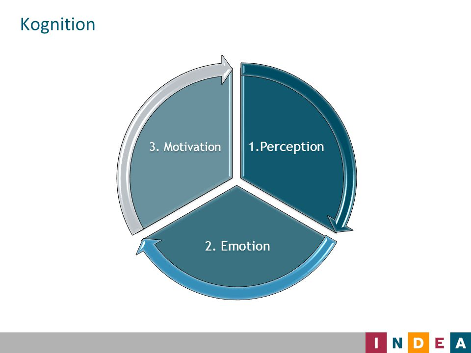 1.Perception 2. Emotion 3. Motivation Kognition