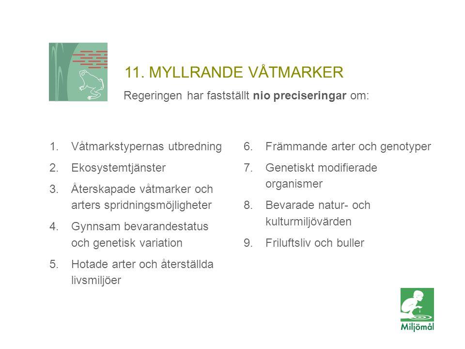 11. MYLLRANDE VÅTMARKER Regeringen har fastställt nio preciseringar om: 1.Våtmarkstypernas utbredning 2.Ekosystemtjänster 3.Återskapade våtmarker och