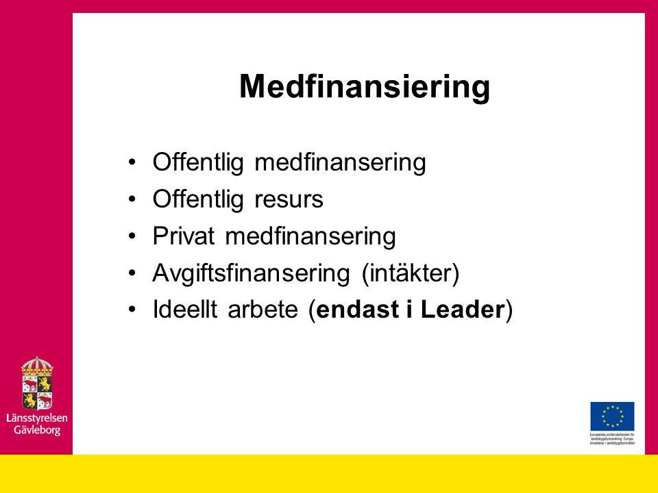 Medfinansiering Offentlig medfinansering Offentlig resurs Privat medfinansering Avgiftsfinansering (intäkter) Ideellt arbete (endast i Leader)
