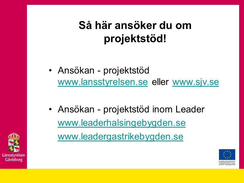 Så här ansöker du om projektstöd! Ansökan - projektstöd www.lansstyrelsen.se eller www.sjv.se www.lansstyrelsen.sewww.sjv.se Ansökan - projektstöd ino