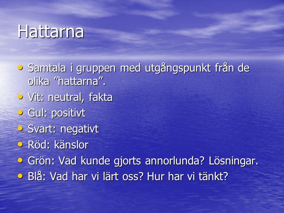 """Hattarna Samtala i gruppen med utgångspunkt från de olika """"hattarna"""". Samtala i gruppen med utgångspunkt från de olika """"hattarna"""". Vit: neutral, fakta"""