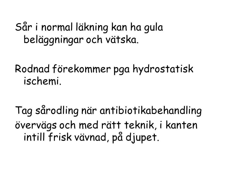 Sår i normal läkning kan ha gula beläggningar och vätska. Rodnad förekommer pga hydrostatisk ischemi. Tag sårodling när antibiotikabehandling övervägs