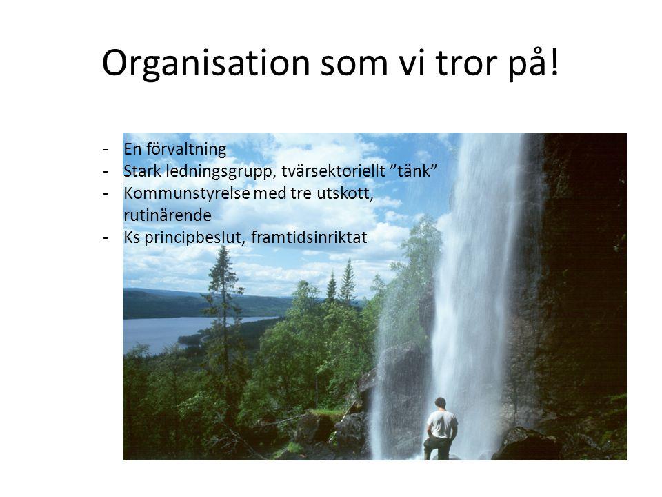 Organisation som vi tror på.