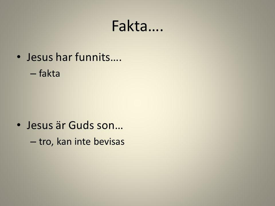 Fakta…. Jesus har funnits…. – fakta Jesus är Guds son… – tro, kan inte bevisas