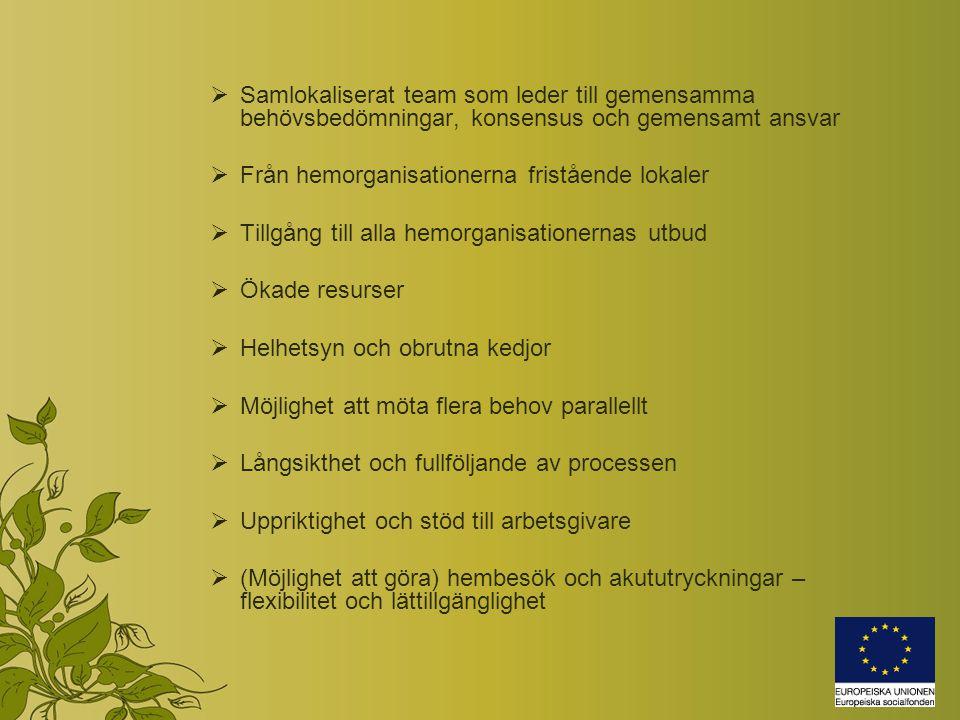  Samlokaliserat team som leder till gemensamma behövsbedömningar, konsensus och gemensamt ansvar  Från hemorganisationerna fristående lokaler  Tillgång till alla hemorganisationernas utbud  Ökade resurser  Helhetsyn och obrutna kedjor  Möjlighet att möta flera behov parallellt  Långsikthet och fullföljande av processen  Uppriktighet och stöd till arbetsgivare  (Möjlighet att göra) hembesök och akututryckningar – flexibilitet och lättillgänglighet