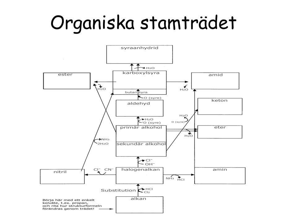 Organiska stamträdet