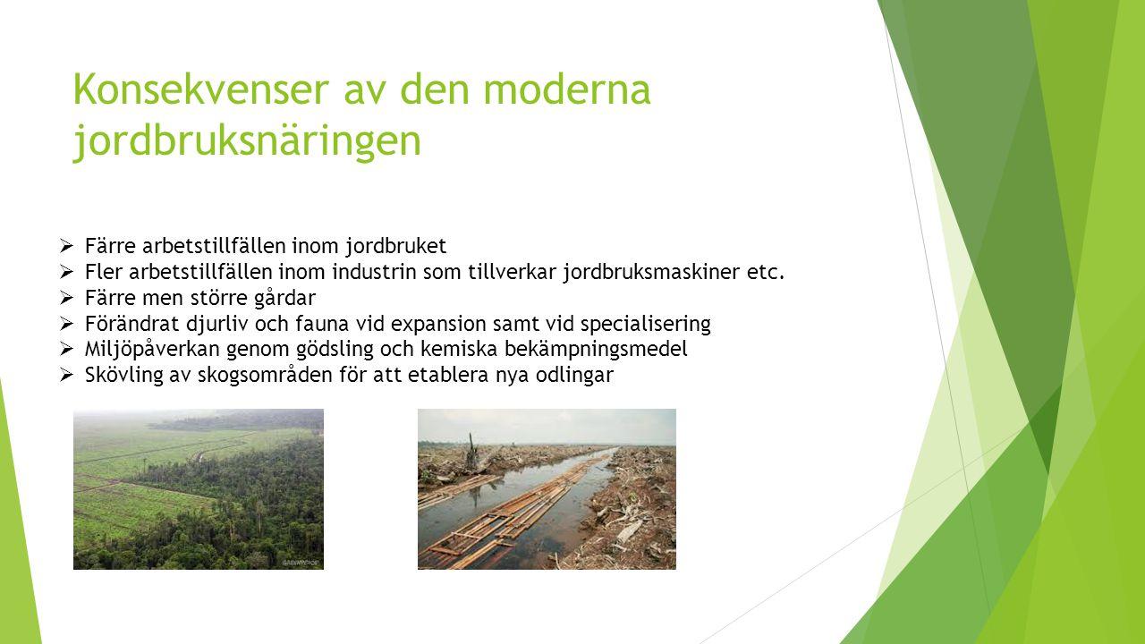 Konsekvenser av den moderna jordbruksnäringen  Färre arbetstillfällen inom jordbruket  Fler arbetstillfällen inom industrin som tillverkar jordbruks