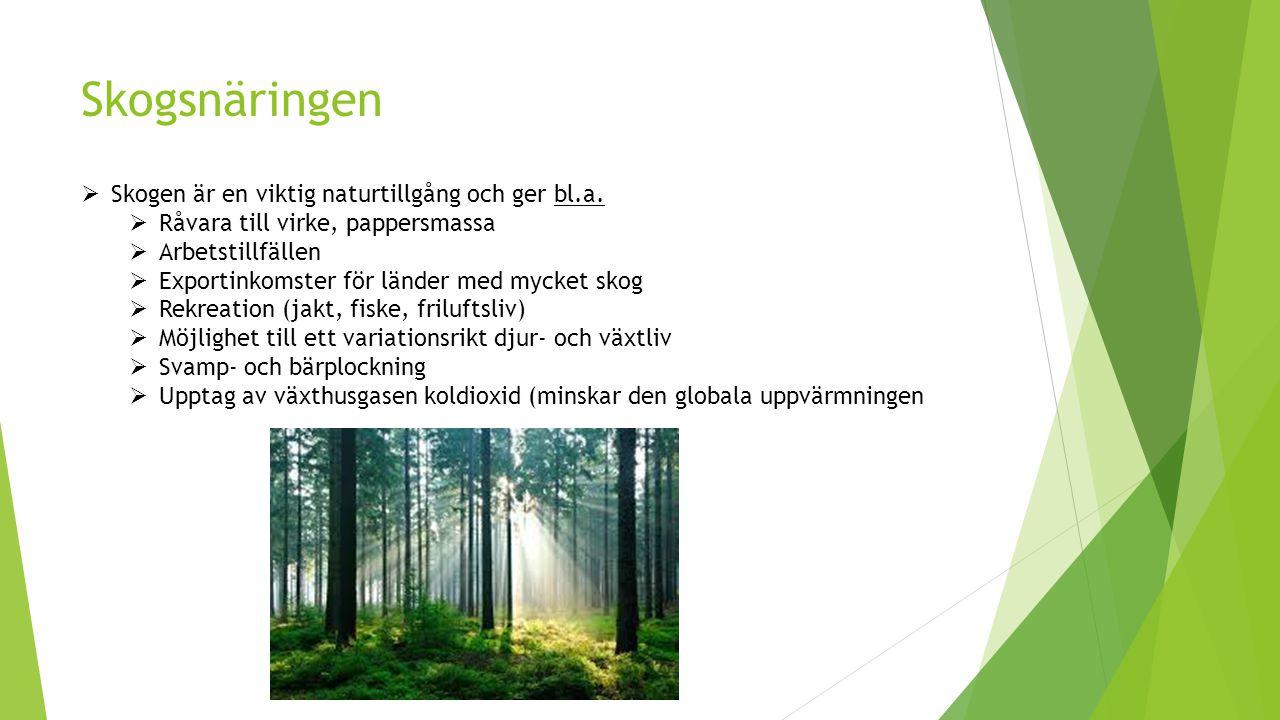 Skogsnäringen  Skogen är en viktig naturtillgång och ger bl.a.  Råvara till virke, pappersmassa  Arbetstillfällen  Exportinkomster för länder med