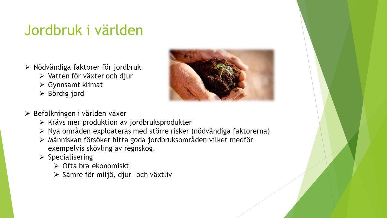 Jordbruk i världen  Nödvändiga faktorer för jordbruk  Vatten för växter och djur  Gynnsamt klimat  Bördig jord  Befolkningen i världen växer  Kr